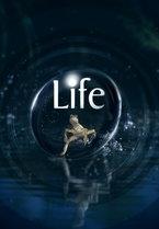 Life (UK)