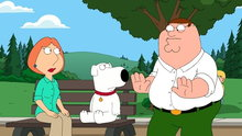 Family Guy: Extra-Large Medium
