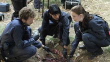 Bones: The Twist in the Plot