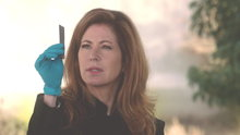 Body of Proof: Disappearing Act